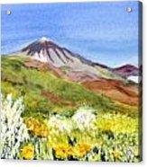 Mount Tiede In Tenerife Acrylic Print