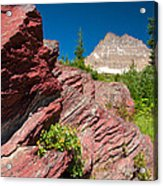 Mount Wilbur Acrylic Print