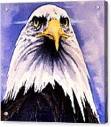 Mountain Bald Eagle Acrylic Print