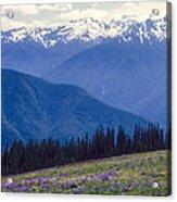 Mountain Color And Snow Acrylic Print