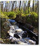 Mountain Creek In Spring Acrylic Print