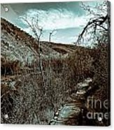 Mountain Creek Path-sundance Utah V3 Acrylic Print