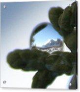 Mountain Dew Drop Acrylic Print
