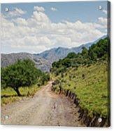Mountain Dirt Road In Northern Crete Acrylic Print