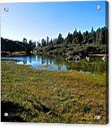 Mountain Marshes 1 Acrylic Print