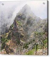 Mountain Path Acrylic Print