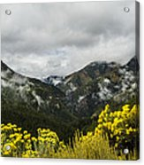 Mountain Rain Acrylic Print