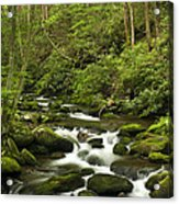 Mountain Rapids Acrylic Print by Andrew Soundarajan