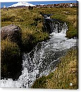 Mountain Stream And Guallatiri Volcano Acrylic Print
