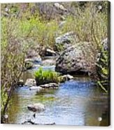 Mountain Stream In Castlewood Canyon State Park Acrylic Print