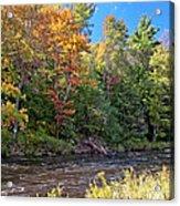 Mountain Stream In Early Autumn Acrylic Print