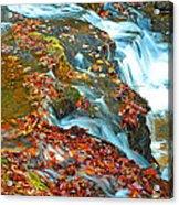 Mountain Stream Waterfall Autumn Acrylic Print