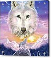 Mountain Wolf Acrylic Print