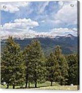 Mountains Co Mueller Sp 1 Acrylic Print