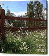 Mountainside Lawn Acrylic Print