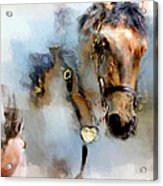 Mounted New York Sunday Acrylic Print
