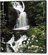 Mouse Creek Falls - Fs000675 Acrylic Print