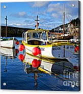 Mousehole Harbour Acrylic Print