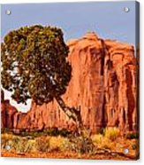 Move Out Of The Way Tree Acrylic Print