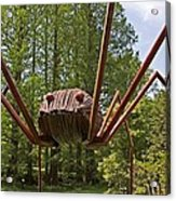 Mr. Spider Acrylic Print