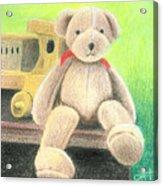 Mr Teddy Acrylic Print