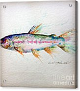 Mr Trout Acrylic Print by Chris Mackie