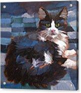 Mr. Tuxedo Acrylic Print