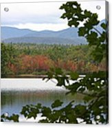 Mt Chocorua Through The Trees Acrylic Print
