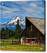 Mt Hood Oregon Acrylic Print