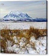 Mt Illimani In Winter Acrylic Print