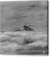 105355-mt. Jefferson Above The Clouds,or,bw Acrylic Print