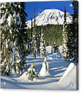 Mt Rainier At Reflection Lakes In Winter Acrylic Print
