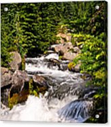 Mt. Rainier Waterfall Acrylic Print