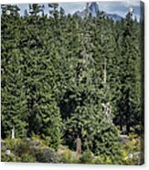 Mt Washington Behind Clear Lake Acrylic Print