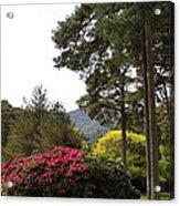 Muckross Garden In Spring Acrylic Print