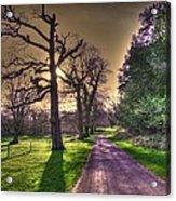Muckross Park Kerry Ireland Acrylic Print by Jo Collins
