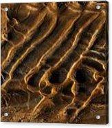 Mud Flats Five Acrylic Print