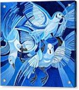 Muge's Pigeons Acrylic Print