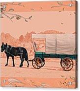 Mule Days - Westmoreland Tn  9-28-13  2 Acrylic Print
