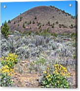 Mule's Ears And Schonchin Butte In Lava Beds Nmon-ca Acrylic Print