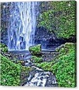 Mulnomah Falls Acrylic Print