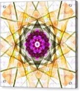 Multi Flower Abstract Acrylic Print