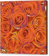 Multi Rose Electric Orange Acrylic Print