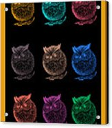 Multicolor Owl Acrylic Print