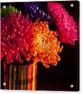Multicolored Chrysanthemums In Paint Can On Chest Of Drawers Int Acrylic Print