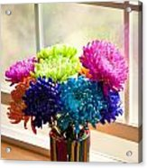 Multicolored Chrysanthemums In Paint Can On Window Sill Acrylic Print