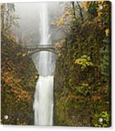 Multnomah Autumn Mist Acrylic Print by Mike  Dawson