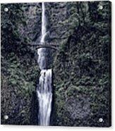 Multnomah Falls - Columbia Gorge - Oregon State Acrylic Print