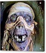 Mummified Mike Acrylic Print