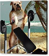 Muscle Boy Boxer Lifting Weights Acrylic Print